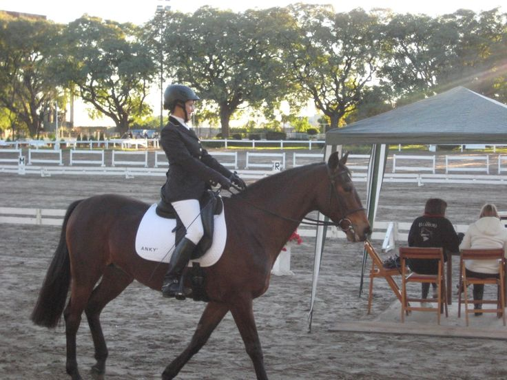Concurso en el Club Alemán de Equitación. Me falta un montón para redondearla. Soy de aprendizaje lento...