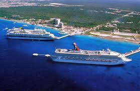 kaikoura ballenas crucero - Buscar con Google