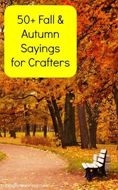 50+ Fall Sayings for Crafters & DIY Projects