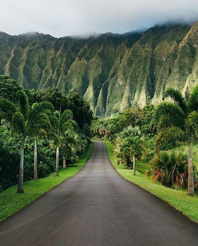 indonésie paysage