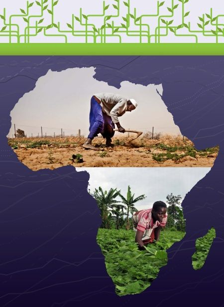 Drivers of Change for the Issue of Food Security