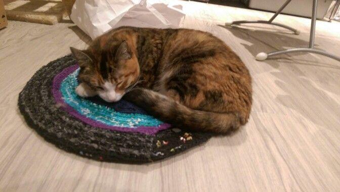 Trojka loves her catmat..