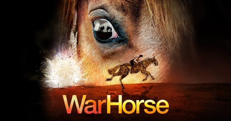 War Horse: Never saw the movie, but the play was well done. It was a switch up from all of the musicals we had the season passes for, but I'm glad it was in the package. Damn near brought me to tears.