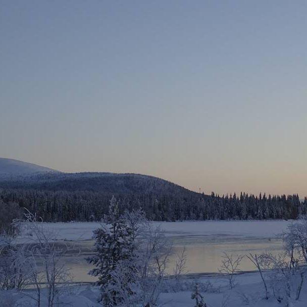 Muonion Kutunivassa 22.12. Kirkas kaamospäivä, talvipäivänseisaus.