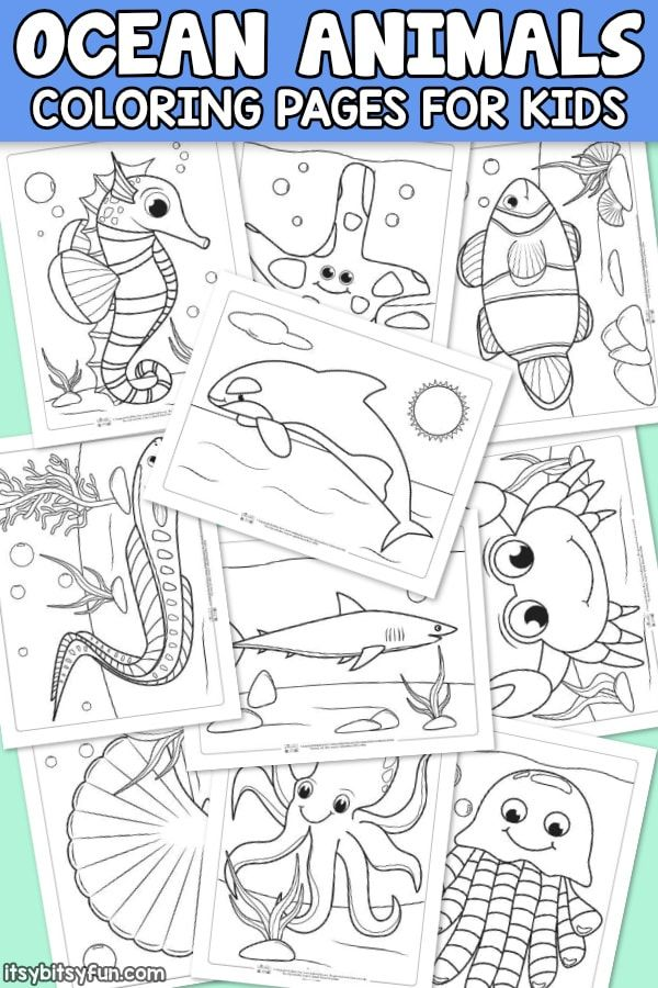 Ocean Animals Coloring Pages for Kids. 10 fun free printable coloring pages for …