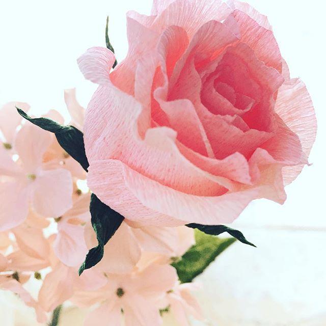 Beautiful rose by Sinae  Shiroura #paperflower #crepepaperflowers #crepepaper #染めたり#抜いたり#表情が#一気に#豊かになる#人生も#豊かに#さな香#@liagriffithの#クレープペーパー#欲しい#逆光シリーズ そーぷりてぃ❤️ そーきゅーと❤️