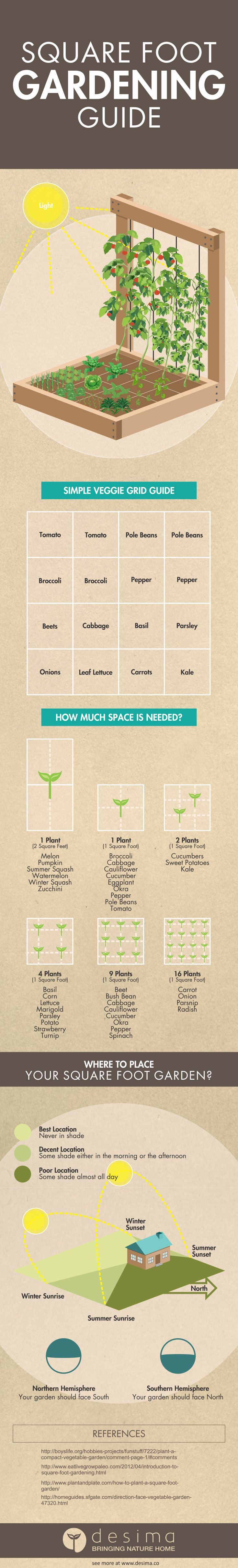 Square foot gardening guide infographic | Desima