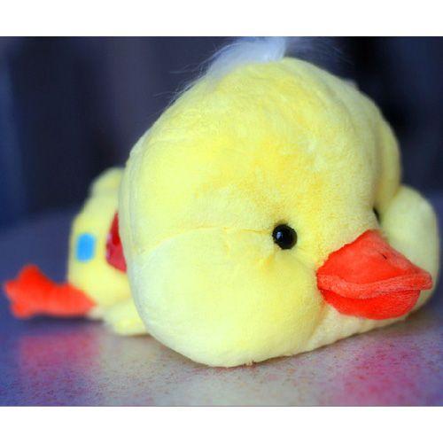 """9"""" Lovely Stuffed Duck Baby Mini Quacker Plush Giftat EVToys.com"""