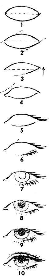 Как нарисовать глаза человека? — Онлайн школа рисования.