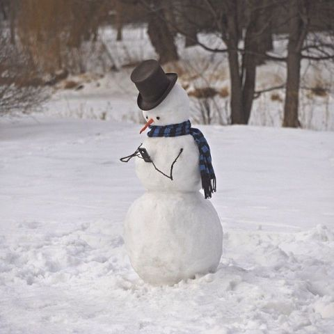 ❅ I'm texting..that's cool...Snowman! OH no!