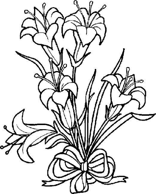 16 best lily images on Pinterest   Drawing flowers, Coloring books ...
