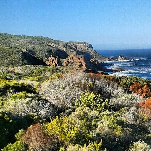 St Blaize Trail, Mossel Bay, South Africa
