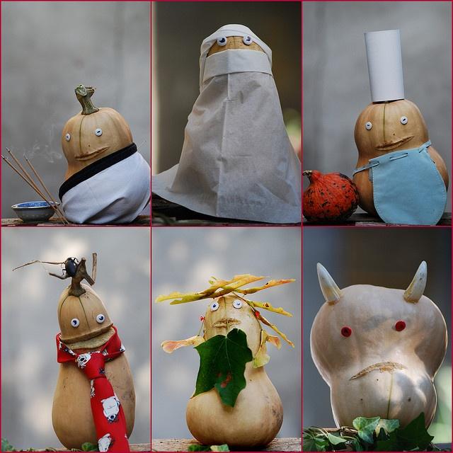 Têtes de Courges !   Flickr: partage de photos!