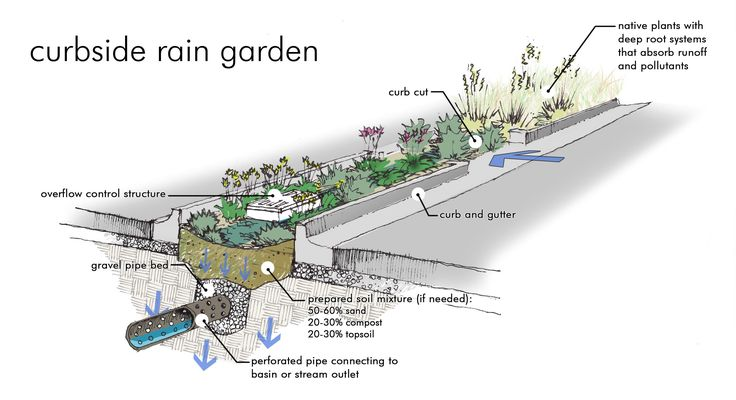 Here is what a raingarden would look like in a parking lot. Wouldn't you love to see this in your nearest parking lot?
