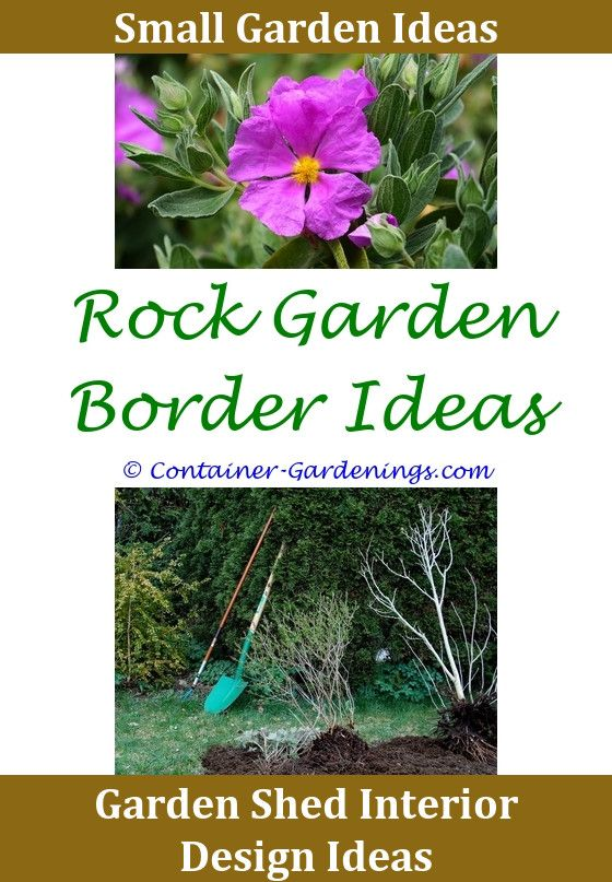 640 best Fairy Garden Ideas Diy images on Pinterest