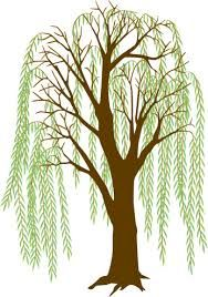 16 best willow ideas images on pinterest weeping willow willow rh pinterest com willow tree silhouette clip art willow tree silhouettes clip art