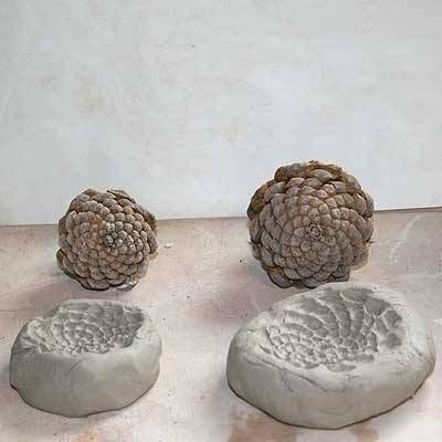 natural pine cone texture