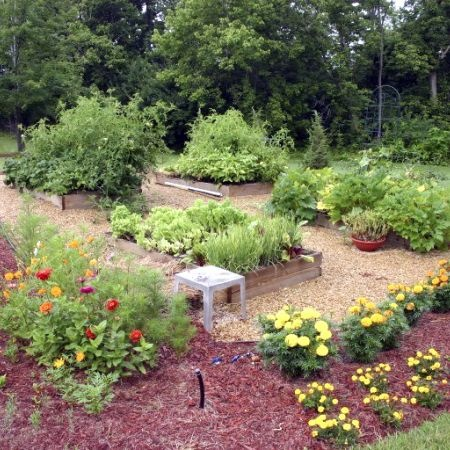 Look at this colorful, green garden!