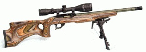 Customized Ruger 10/22 Semi-Automatic Rifle