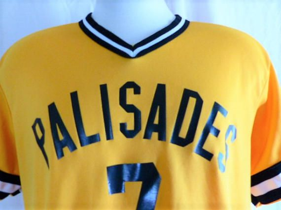 go Pali Dolphins vintage 80s 90s Palisades Charter High School