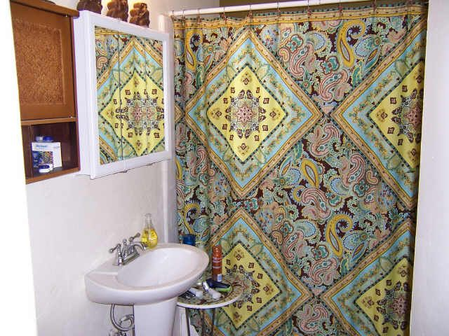Image Detail For  Paisley Shower Curtains