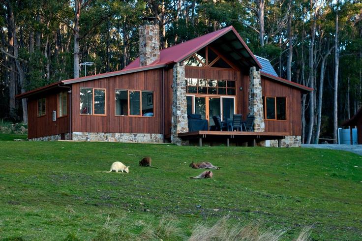 Wallabies outside The Lodge