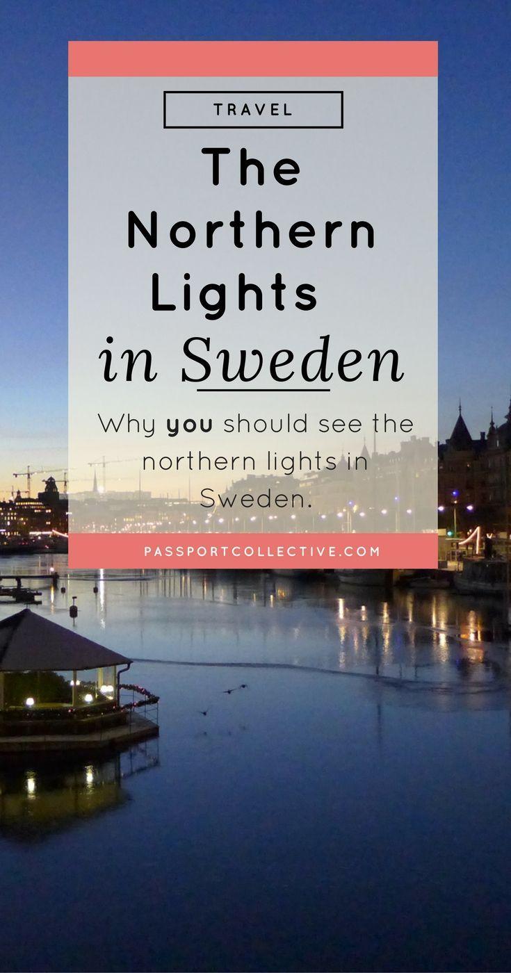 Passport Collective I Northern Lights I Sweden I Arctic Circle