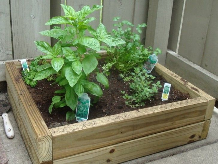 patio gardens for food | Small Patio Gardens