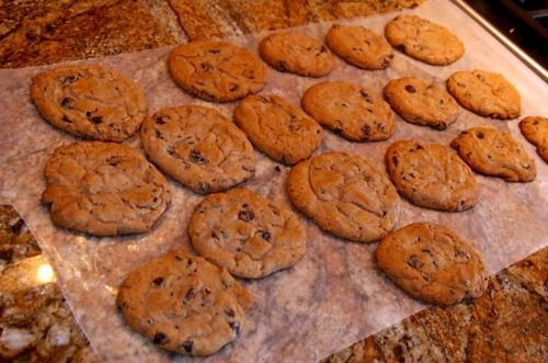 """Healthy Chocolate chip cookies    Makes 12 Cookies.    78 Calories Each 1g Fat 13g Carbs 3g Protein    """"Doing Dessert"""""""