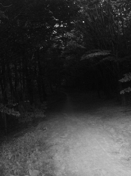 Twilight Zone (4)