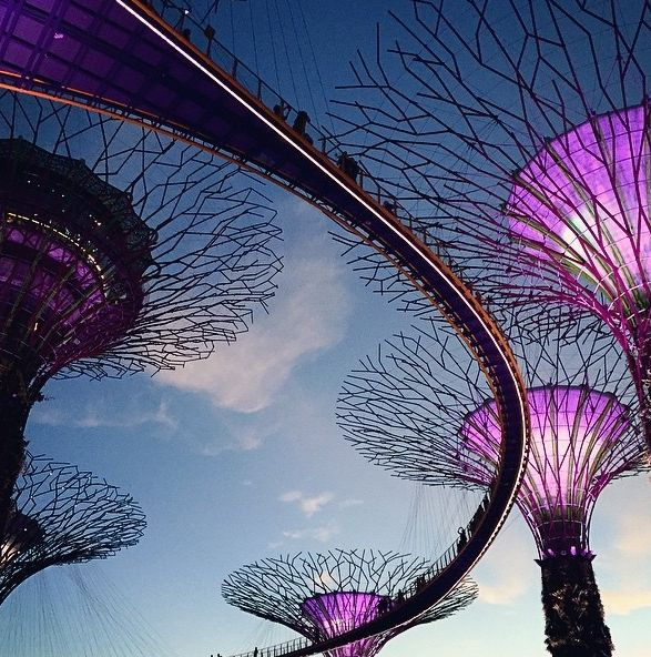 Gardens by the Bay, SIngapore. Photo courtesy of ipbrian on Instagram.