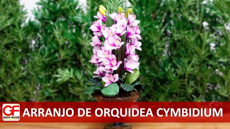 Arranjo de Orquidea Cymbidium