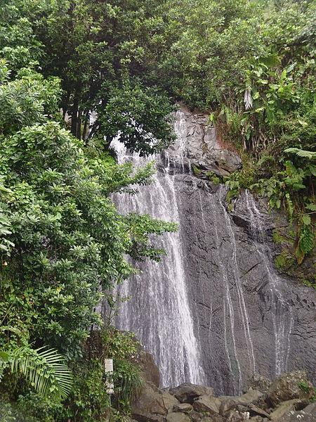 Floresta Nacional El Yunque, Rio Grande, Porto Rico