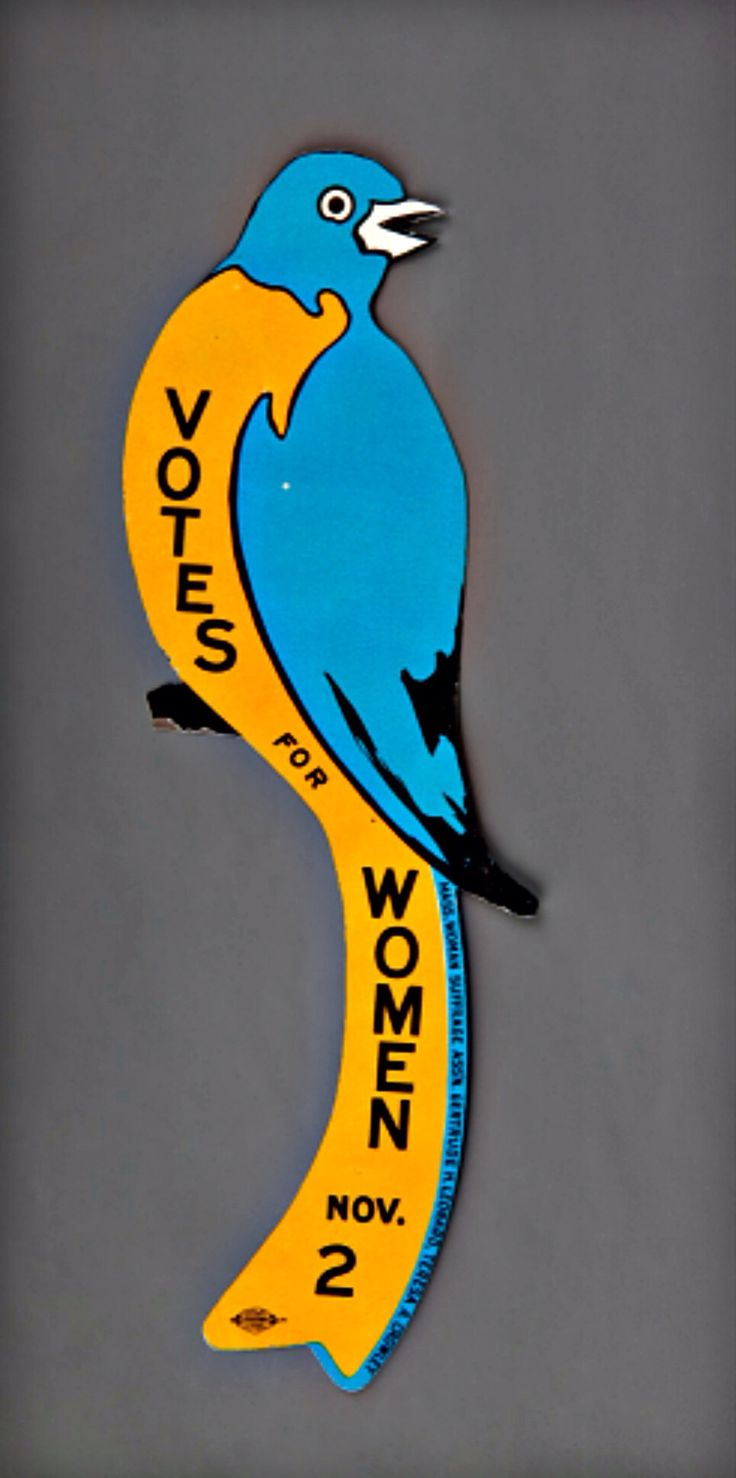 best images about suffrage battle for the th amendment on this tin bird made for the suffrage referendum in massachusetts was nailed to fences
