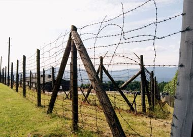 Barbed Wire,Manufacturer of Barbed Wire,Supplier of Barbed Wire