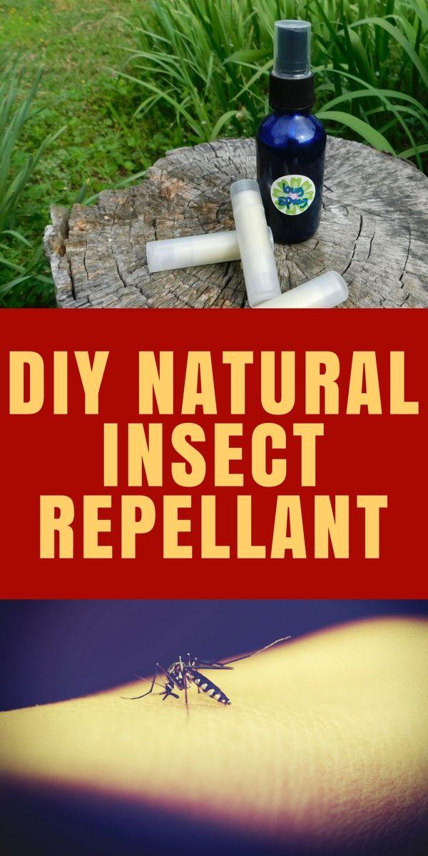Natural Bug Spray   Recipe   Insect repellent, Gnat ...