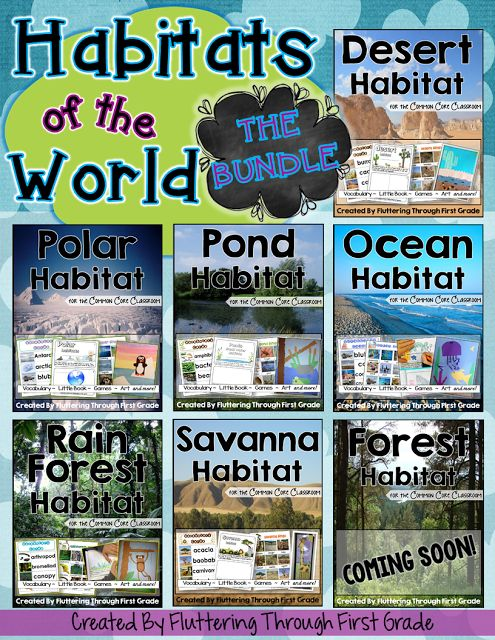 Fluttering Through First Grade: Habitats of the World Lesson Plans