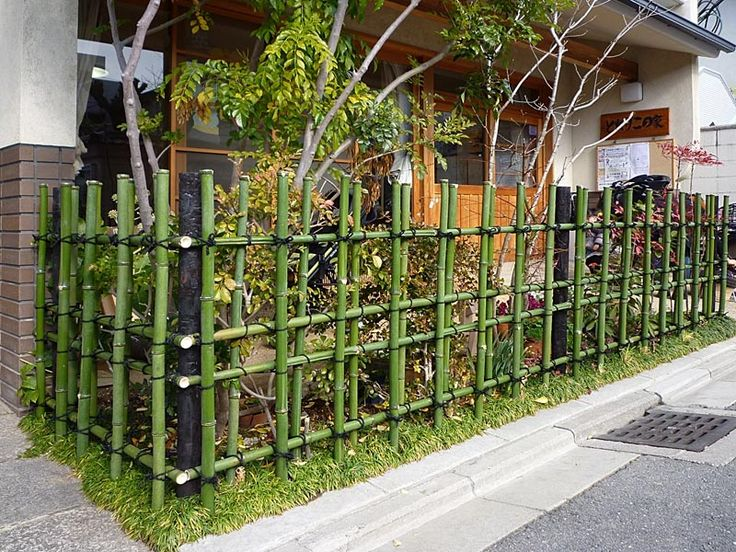 Love this bamboo fence! Going to get started this weekend...