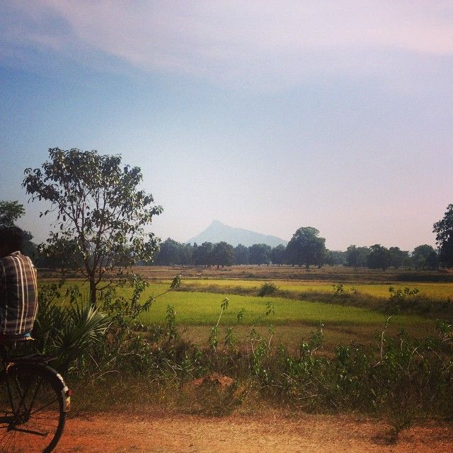 Rural Orissa in India, where our fairtrade organic cotton is grown. mukakids.com