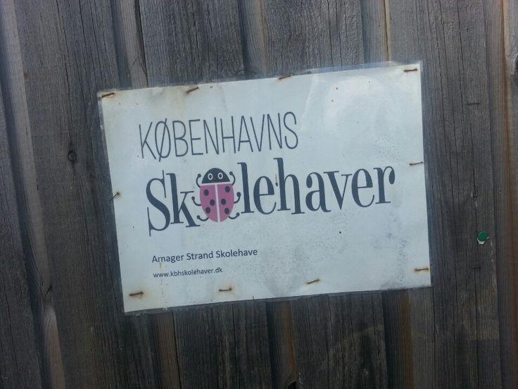 Københavns Skolehaver hører under Bæredygtig udvikling hos Københavns Kommune. Se tilbud og skoleforløb her: http://www.kbhskolehaver.dk/