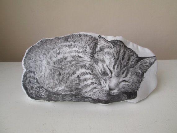 subcutaneous fluids for cats