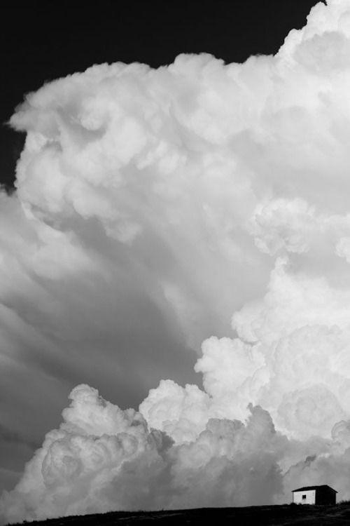 preciousandfregilethings:  recherchestetique: cloud