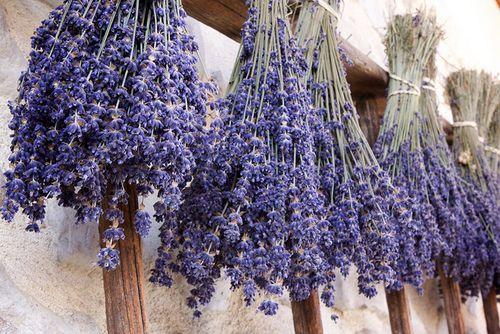 Lavender.Favorite Things, Dry Lavender, Decor Inspiration, Lavender Lavander, Lavendar, Gardens, Bye Bye, House Smells, Dry Flower
