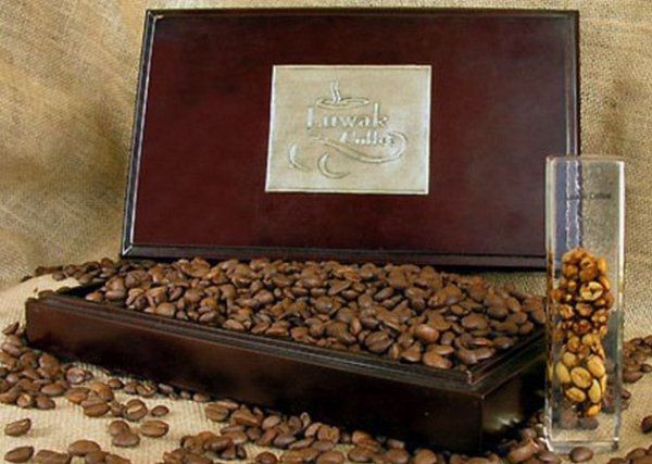 самый дорогой кофе в мире Самый дорогой сорт кофе в мире производят на Восточной Яве, неподалеку от индонезийского города Сурабая. Этот кофе делают с помощью пальмовой циветты, небольшого древес...