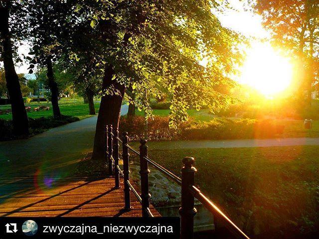 #Repost @zwyczajna_niezwyczajna with @repostapp ・・・ Dzisiejszy dzień minął mi błyskawicznie! 🙅Wam też? 😁 #biskupiec #park #zachódsłońca #ibiskupiec #biskupiecfb #warmia