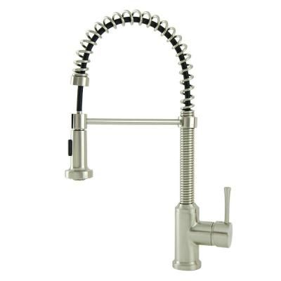 Italia Residential Single-Handle Spring Coil Pull-Down Sprayer Kitchen Faucet in Brushed Nickel-N96465-BN - The Home Depot