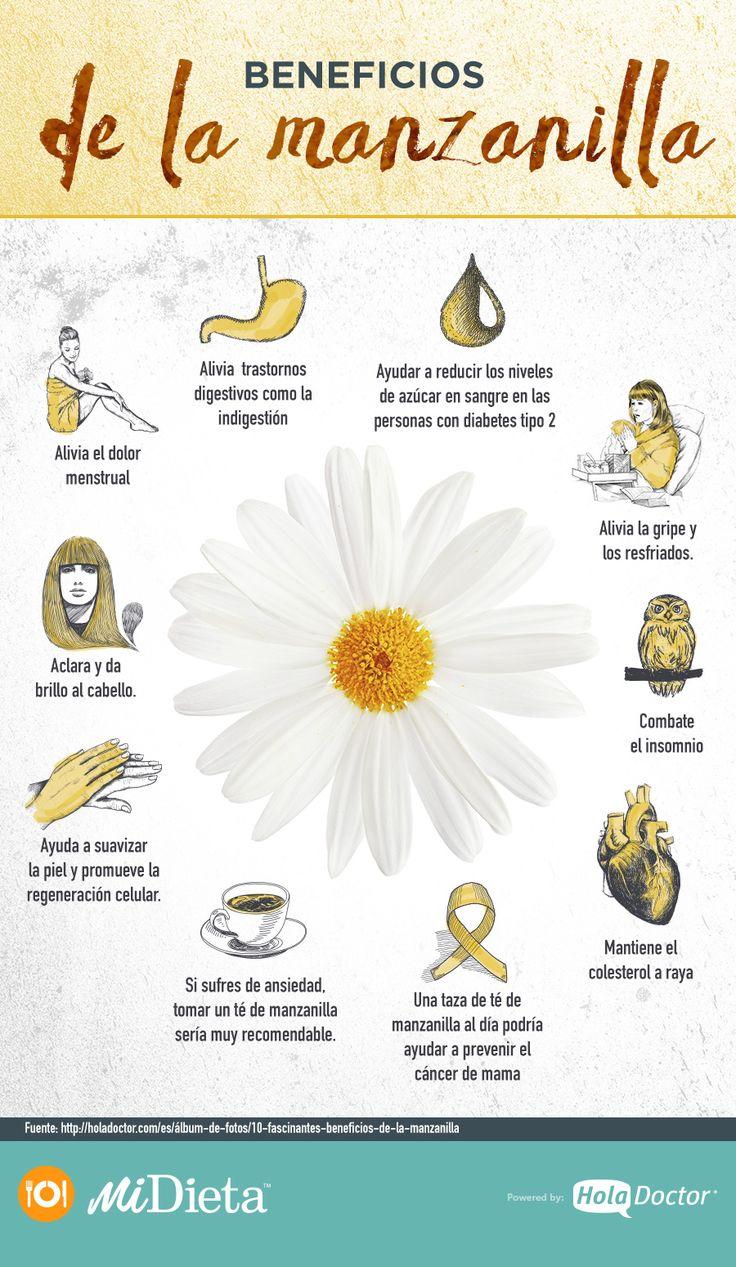 Si te gusta la manzanilla, esta infografía te encantará. #Manzanilla #Salud #Beneficios