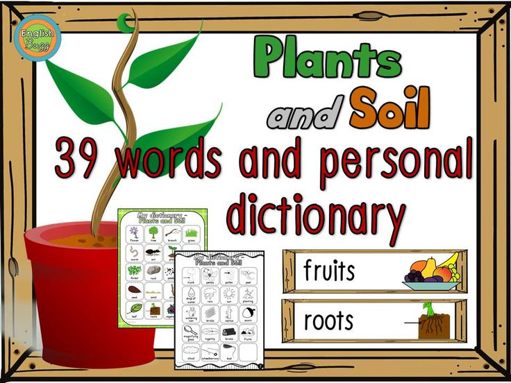 39 words for your word wall and 2 printable pages for students' personal dictionary. Vocabulary on plants and soil.