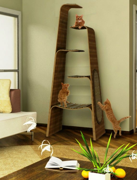 496 best images about Cat Trees for VERTICAL Spacing on Pinterest