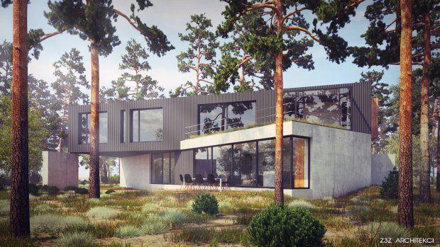 Zdjęcie numer 1 w galerii - Dom jak wielki X - czyli jak pogodzić sprzeczne kierunki